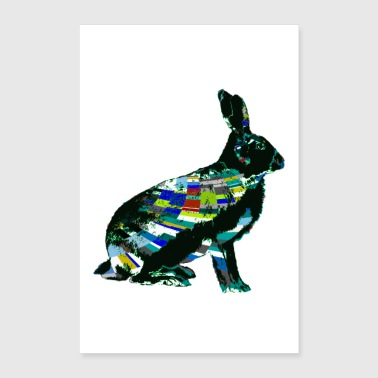 Fashion Rabbit - Poster 24 x 35 (60x90 cm)