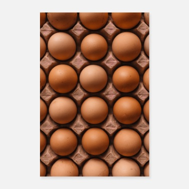 Eggs chicken eggs in egg carton - Poster 24 x 35 (60x90 cm)