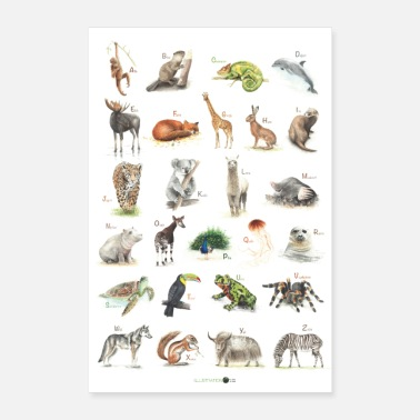 Animal Abc ABC Poster Animals - Poster