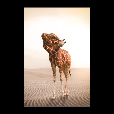 Giraffe with a knot in the throat - Poster 24 x 35 (60x90 cm)