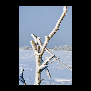 Lonely tree in the frost Poster - Poster 24 x 35 (60x90 cm)