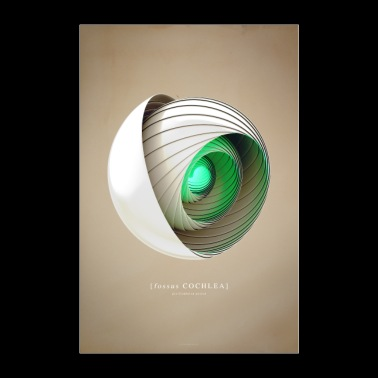 Shell one - Poster 24 x 35 (60x90 cm)