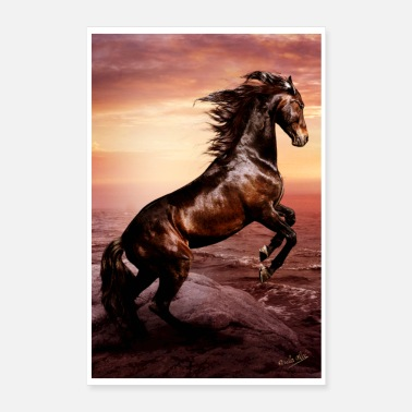 Dressage Wild horse, freedom and indomitable spirit - Poster 16 x 24 (40x60 cm)