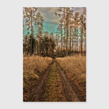 autumn forest - Poster 16 x 24 (40x60 cm)