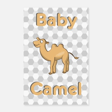Baby Baby Camel Camel Baby Animal - Poster