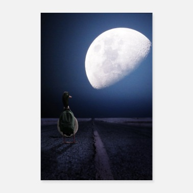 Duck Duck in the moonlight - Poster 16 x 24 (40x60 cm)