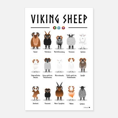 Nordisch Viking Sheep Poster - Poster