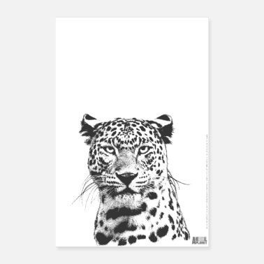 Agility Animal Planet Leopard - Poster