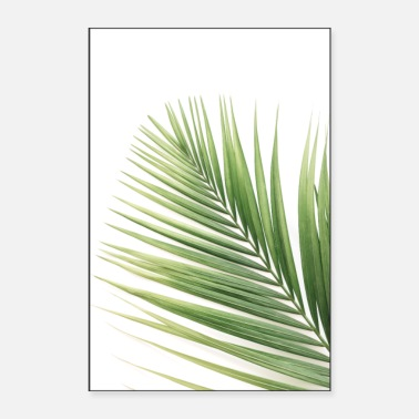 Palmen Green Palm Leaves (2) - Poster