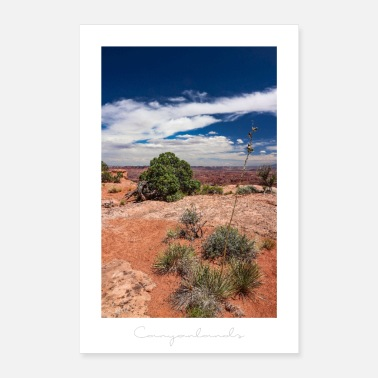 Region Canyonlands National Park - Utah (USA) - Poster