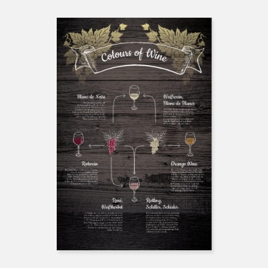 Wein Colours of Wine - Wein-Wissen - Poster