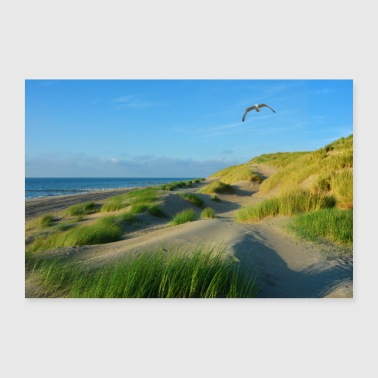 North Sea dunes - Poster 36 x 24 (90x60 cm)