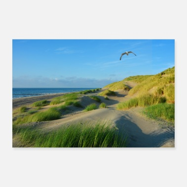 North Sea North Sea dunes - Poster