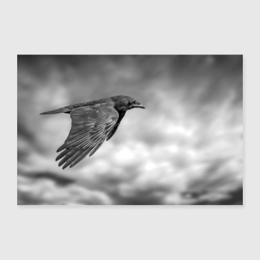 A Crow - Poster 36 x 24 (90x60 cm)