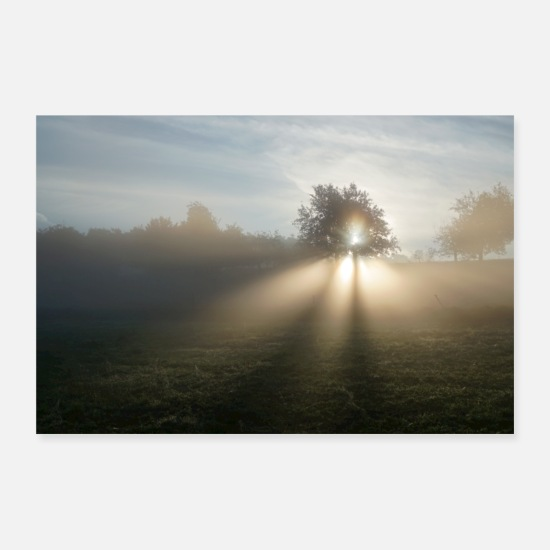 Paysage Posters - soleil du matin - Posters blanc