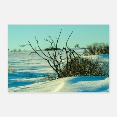 Winter Vacation Winter landscape poster - Poster