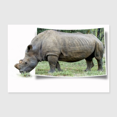 Rhino looks out of a photo and eats grass - Poster 36 x 24 (90x60 cm)