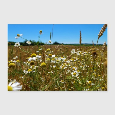 Flower meadow - pure nature! - Poster 36 x 24 (90x60 cm)