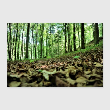 Forest, foliage, recreation - Poster 36 x 24 (90x60 cm)