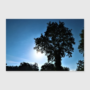 Tree and sun - Poster 36 x 24 (90x60 cm)