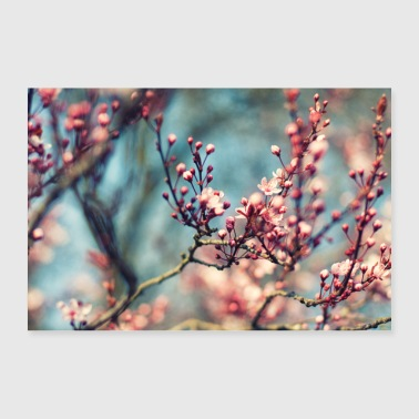 spring flowers - Poster 36 x 24 (90x60 cm)