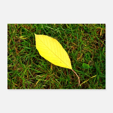 Motivation Foliage leaf autumn motive - Poster 36 x 24 (90x60 cm)