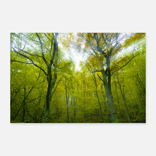 Gift Idea Posters - Forest - Posters white