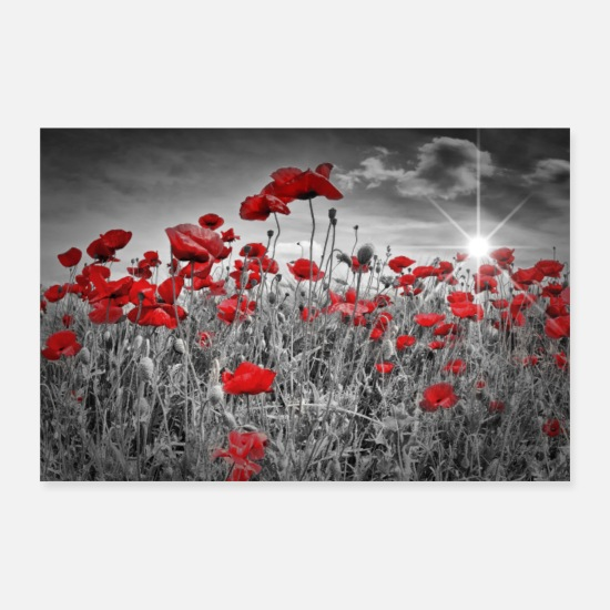 Flowers Posters - Idyllic poppy field - Posters white
