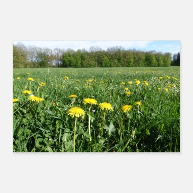House Plant Meadow with flowers - Poster