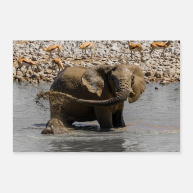 Mali Elephant in the water hole - Poster