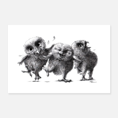 Three funny naughty owls - Poster