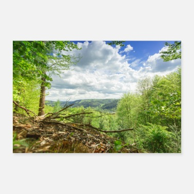 Natural landscape forest with sky - Poster