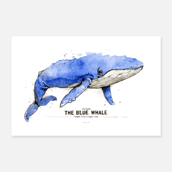 Enviromental Posters - Blue whale (The Blue Whale) - Posters white