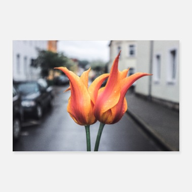 2beautys - flowers in city scene - Poster 36 x 24 (90x60 cm)