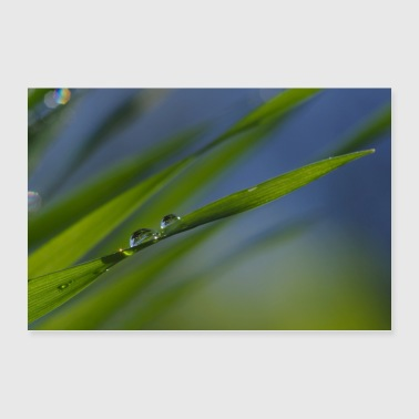 Small world mirrored in water drops - Poster 36 x 24 (90x60 cm)