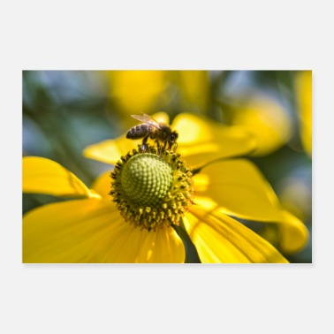 Blume When yellow is added - Poster 36 x 24 (90x60 cm)