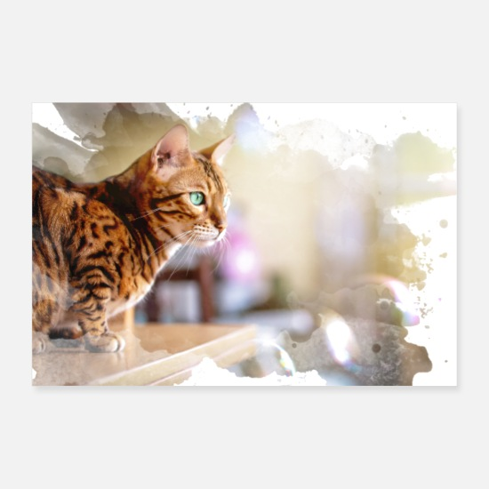 Art Posters - Chat Bengal pittoresque - Posters blanc