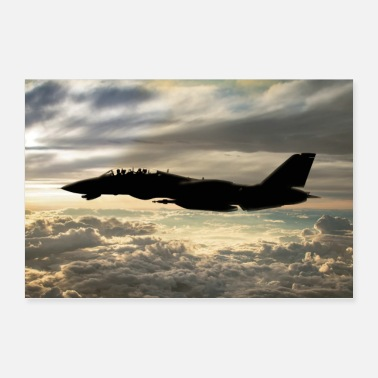 Airline F-14 - Poster