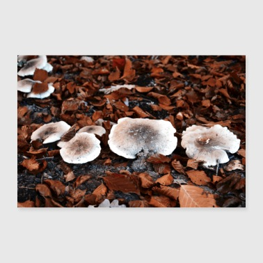 champignons sauvages - Poster 90 x 60 cm