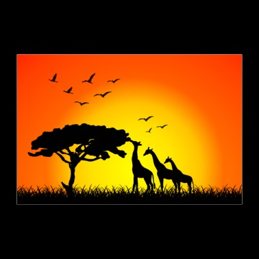 Giraffe family in the sunset | Nature Contest - Poster 36 x 24 (90x60 cm)