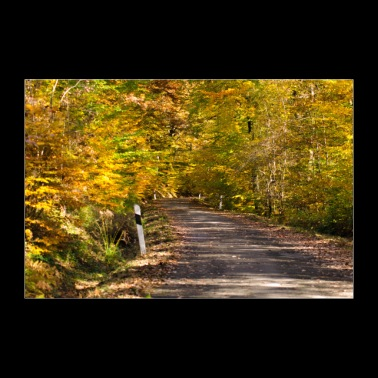 Road through autumn forest. Poster - Poster 36 x 24 (90x60 cm)