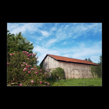 Old barn with slightly cloudy sky - Poster 36 x 24 (90x60 cm)