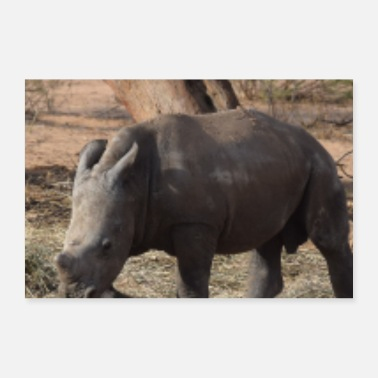 Animal Welfare Rhino Baby Photo Animal Africa Animal Welfare - Poster