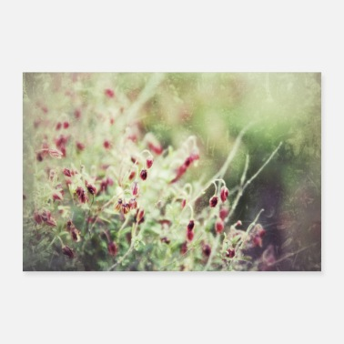 Stede Present Retro blomster - Poster 30x20 cm