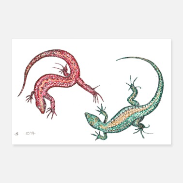 Drawing Lizzard's Lizards 3: 2 - 30x20 cm Poster