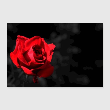rose rouge - Poster 30 x 20 cm