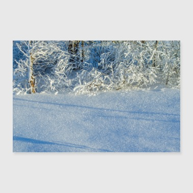 December Winter snow crystals poster - 30x20 cm Poster