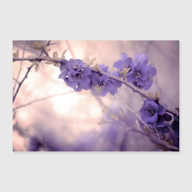Lilla blomster i pastell - Poster 30x20 cm