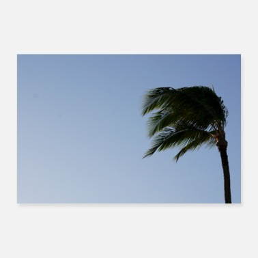 Teal Palm tree sky sea blue Hawaii - 30x20 cm Poster