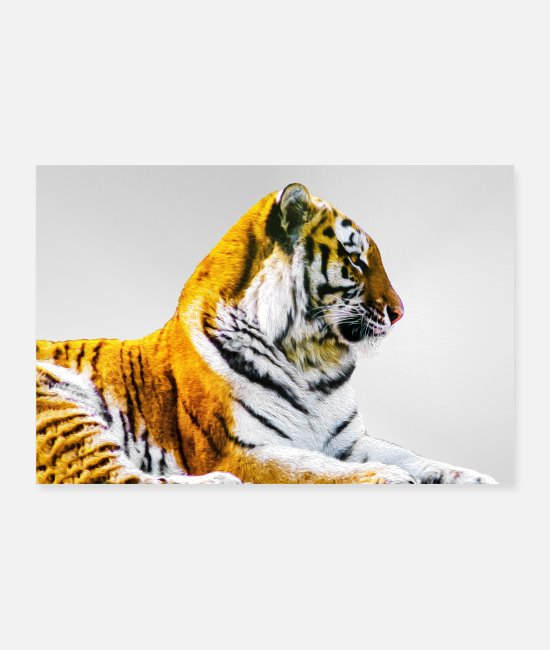 Big Posters - Tiger - Posters white